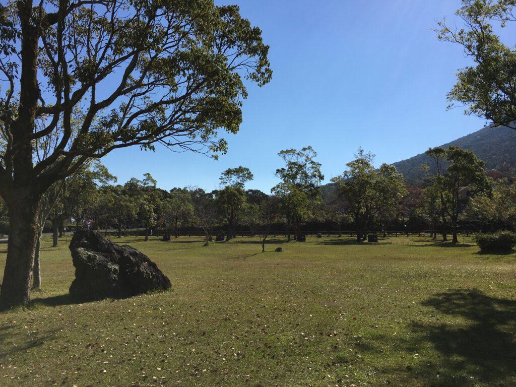 かいもん山麓ふれあい公園キャンプ場のオートフリーサイト