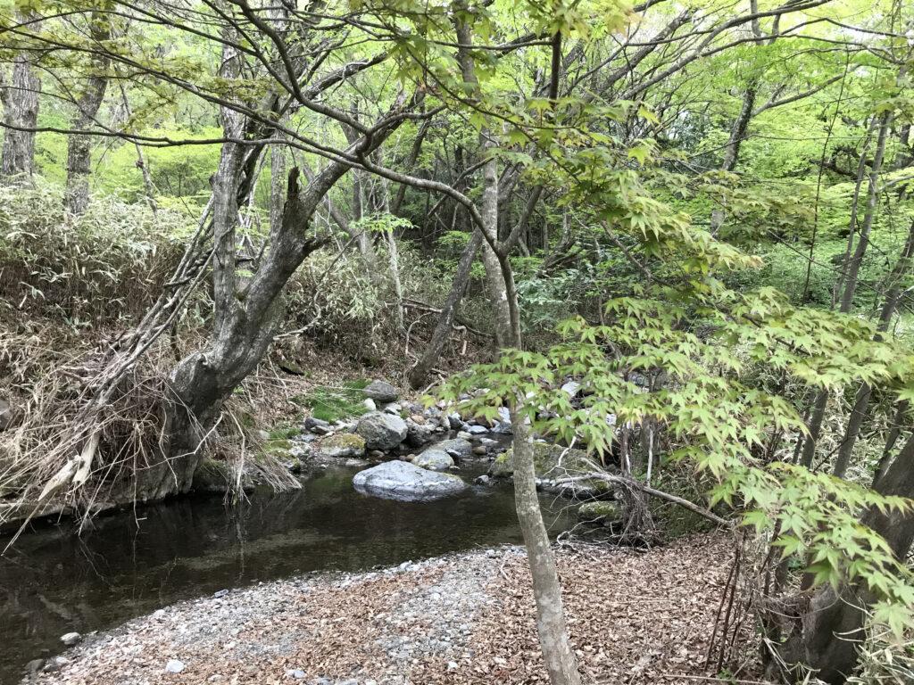 熊本県阿蘇郡ヒゴダイ公園キャンプ場 川