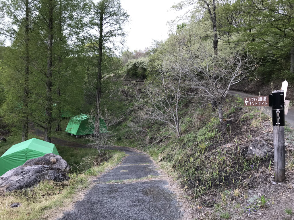 熊本県阿蘇郡ヒゴダイ公園キャンプ場 テントサイト